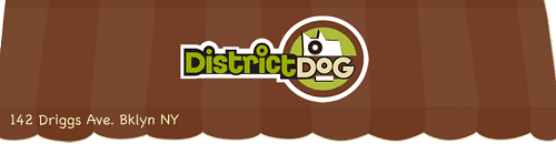 District-Dog_Logo-Banner_500