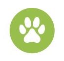 Greenpoint-Veterinary-Hospital_Logo
