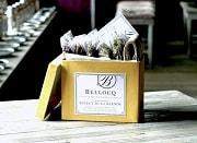Bellocq_HerbalBlends1_grande_180