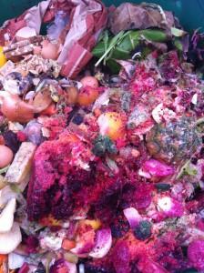 Compost at the McGolrick Park farmer's market