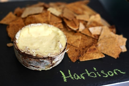 Harbison_Cheese_Greenpoint