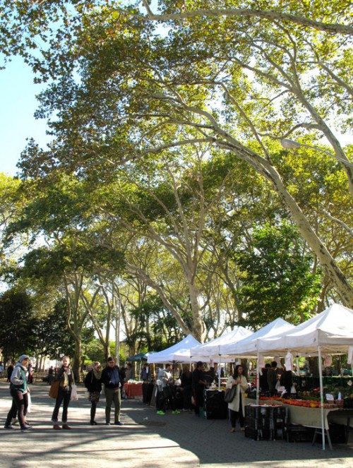 downtoearth_mcgolrick_park_farmers_market_MGP-Oct2014