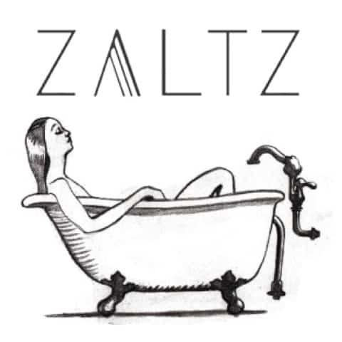 ZALTZ_sketch