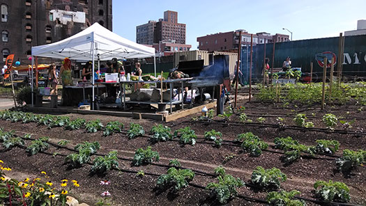 The BRUNCHRave took place in North Brooklyn Farms