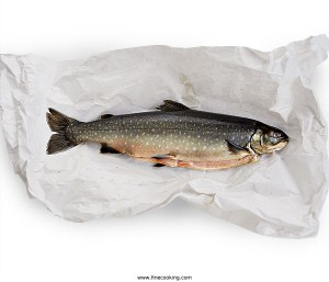 Arctic char (from finecooking.com)