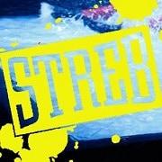STREB_Logo_180
