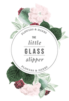 The-Little-Glass-Slipper_Logo