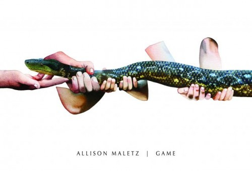 The Game by Allison Maletz