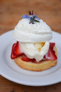 Strawberry Shortcake served on a biscuit