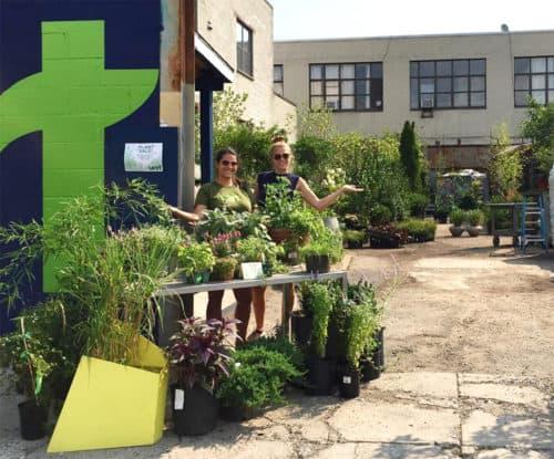Plant Sale via Vert Gardens Instagram