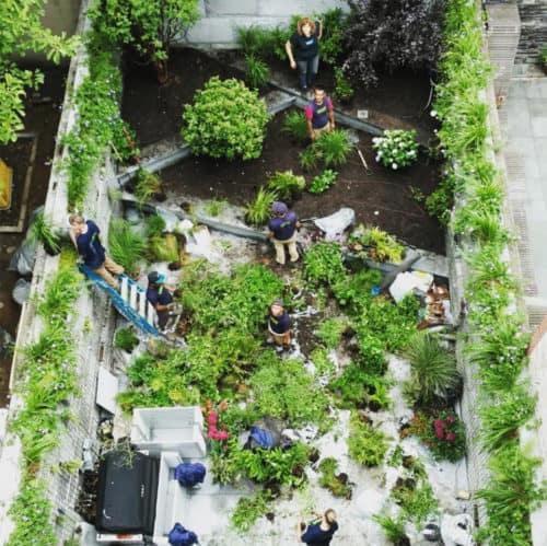Vert Gardens gettin' it done. Via Instagram