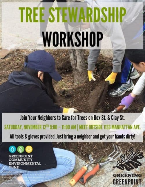 Tree caring workshop