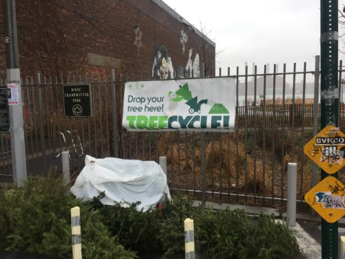 Mulchfest - Transmitter Park - Christmas Tree Dropoff