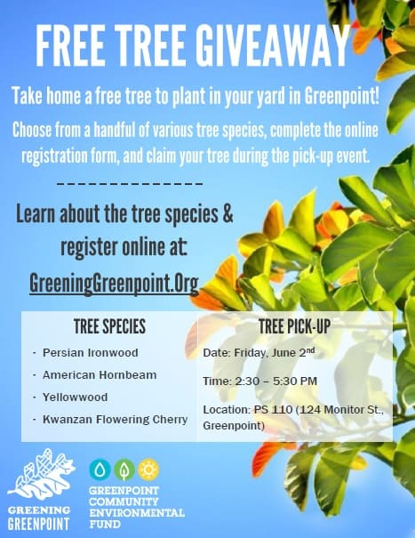 GG Tree Giveaway flyer_JPEG