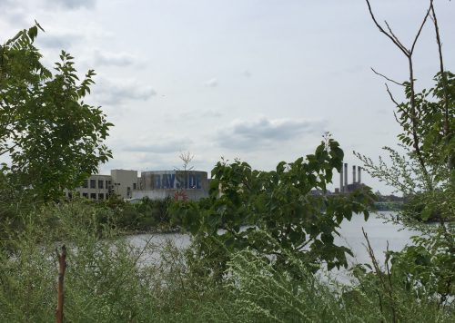 View of Bayside Oil Tanks through the weeds at Bushwick Inlet Park. Photo by Megan Penmann