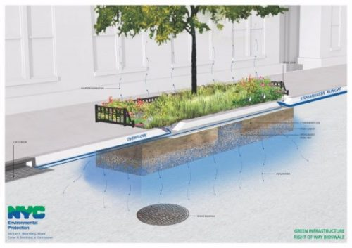 rendering of a bioswale