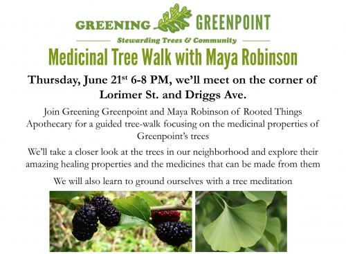 Medicinal Tree Walk