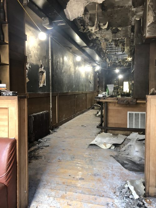 Anella, after the fire. Photo: Megan Penmann