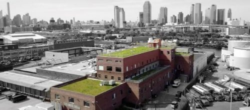 Climate Week Events Happening in North Brooklyn